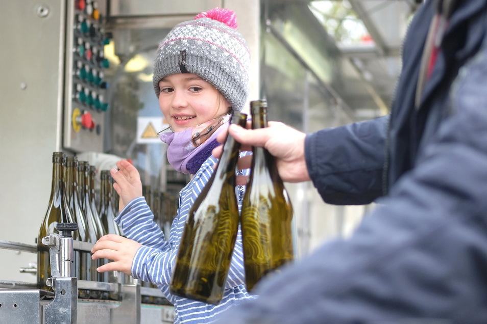 Melissa Hohlfeld hat viel Spaß, leere Flaschen auf das Förderband zu stellen. Weil die Schule zu ist, kann sie auf dem Hof des Sekt- und Weingutes helfen.