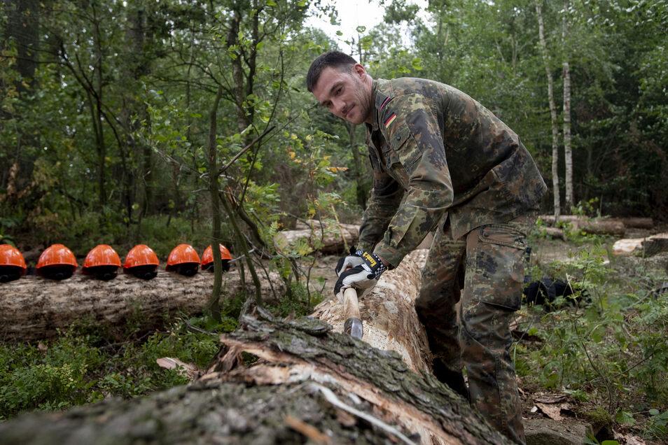 Oberstabsgefreiter Tobias Sperling befreit einen Baum von der Rinde. 62 Soldaten der Bundeswehr helfen den Förstern in Sachsens Wäldern, gegen den Borkenkäfer vorzugehen. Tobias Sperling ist einer derjenigen, die im Forstbezirk Neustadt zum Einsatz kommen