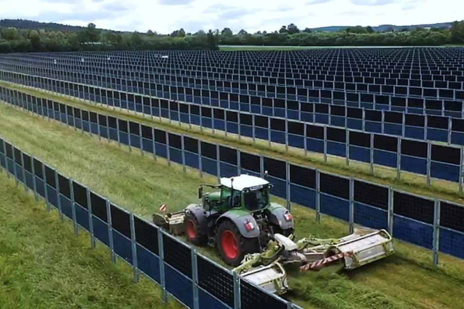 In Donaueschingen steht seit vergangenem Jahr bereits eine Agri-Photovoltaikanlage. So eine soll auch zwischen Klein Krauscha und Kaltwasser entstehen.