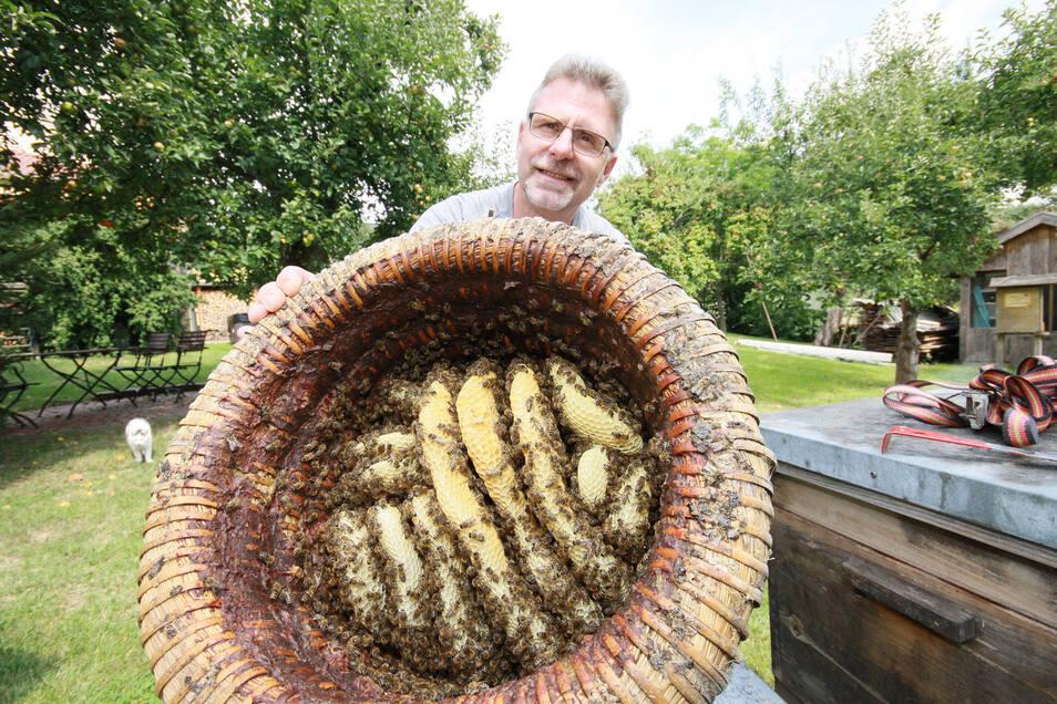 Steffen Wittig aus Rhäsa bei Nossen gewährt Neugierigen am Sonntag einen Blick in verschiedene Arten von Bienenkörben – auch in diesen Lüneburger Stülper.