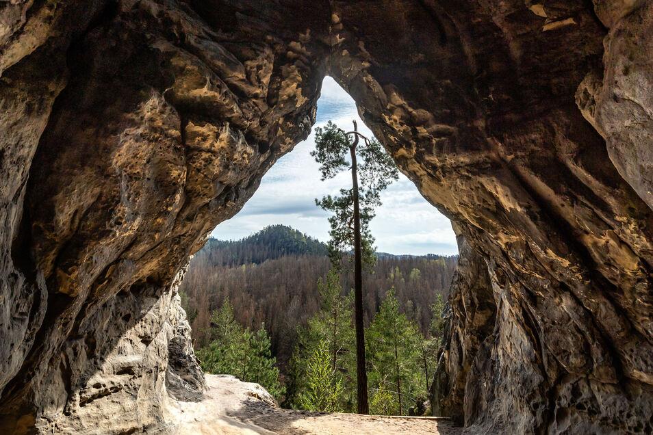 Kleinsteinhöhle in der Sächsischen Schweiz. Seit gut 120 Jahren klettern Sebnitzer im Elbsandstein.