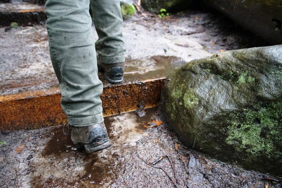 Neue Holzstufen am Nordanstieg halten Wasser und Sand zurück und wirken der damit der Erosion entgegen.