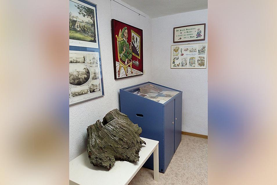 Der Stubben der ersten Andersen-Lärche ist nach seiner Tiefkühl-Behandlung nun im Maxener Museum zu sehen.