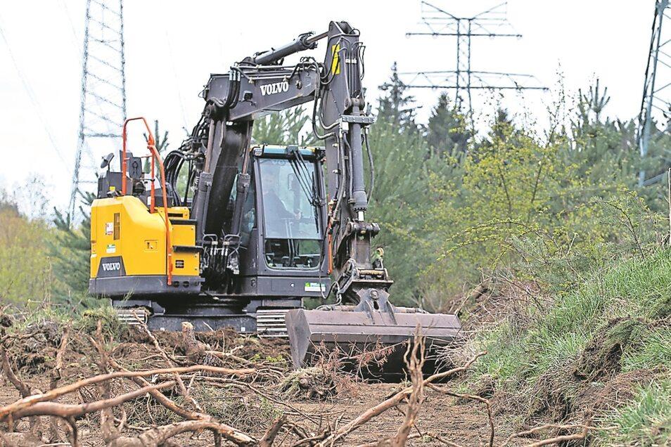 Ein Bagger bereitet die Fläche für die Trockenwiese vor.