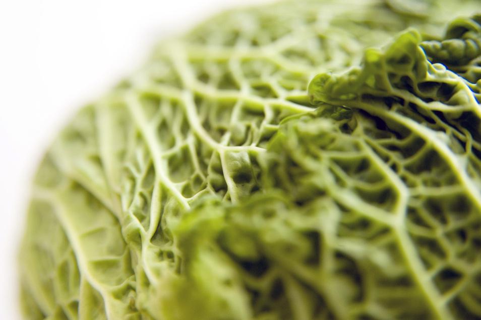 Wirsingköpfe haben dunkelgrüne, stark gekrauste Blätter - das Gemüse mit dem würzigen Kohlgeschmack passt gut in die herzhafte Küche oder zu asiatischen Gerichten.
