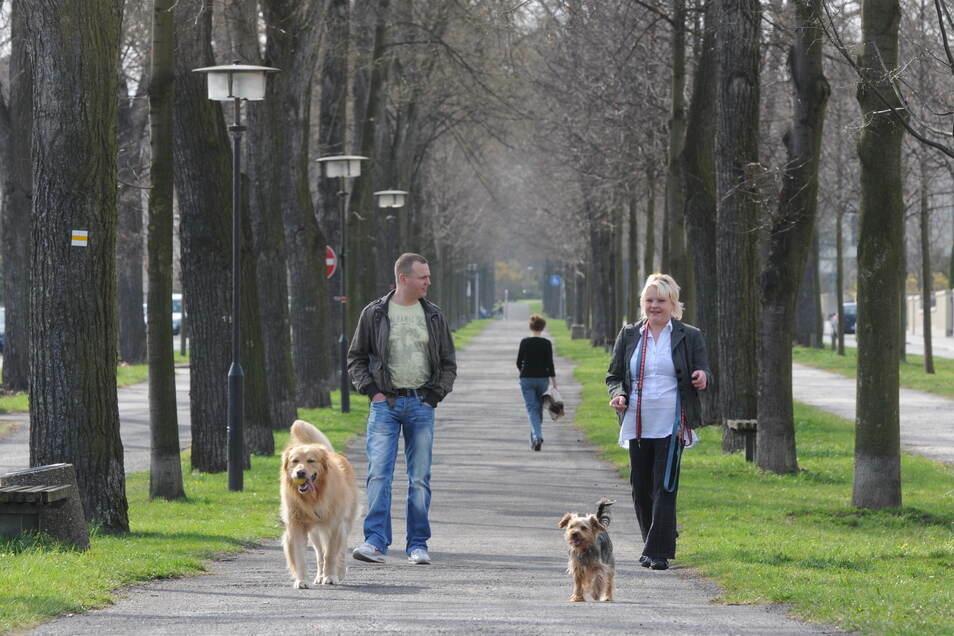 Miteinander reden lässt sich in Zeiten von Corona auch bei einem Spaziergang zu zweit.