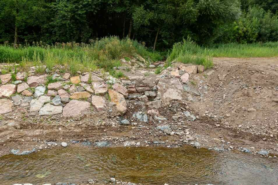 Die Mündung des Somsdorfer Baches wurde neu gestaltet. Bevor das Nebengewässer in die Weißeritz fließt, durchquert es noch ein Biotop.
