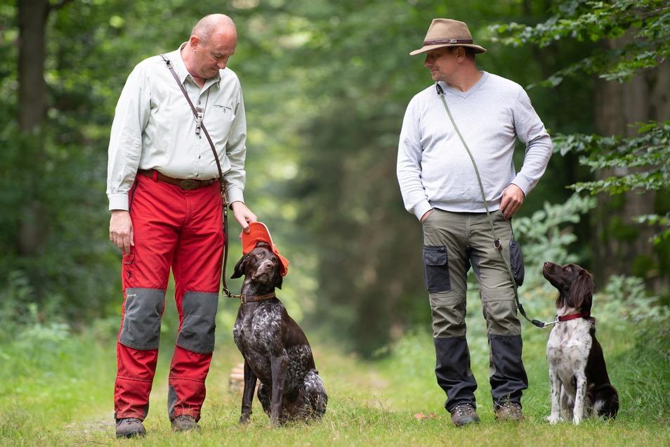 Hundeführer mit den frisch ausgebildeten Kadaverspürhunden. Sie sollen tote infizierte Wildschweine auch im Dickicht und in schwer zugänglichem Gelände aufspüren.