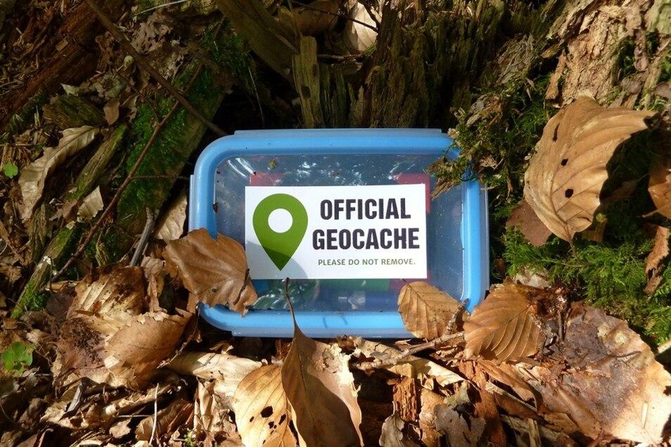 Gefunden! Das Logo auf dem Deckel zeigt, dass es sich bei der Dose um den gesuchten Geocache handelt.