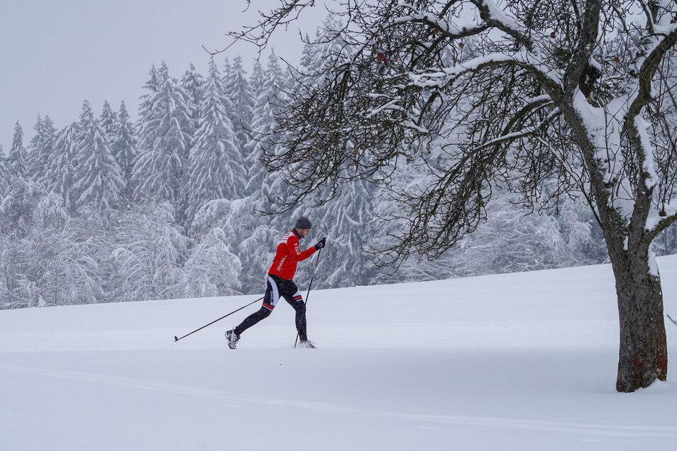 Die Schneebedingungen sind außergewöhnlich gut. Bei Hermsdorf und auf dem Ullersdorfer Golfplatz wurden Loipen gespurt.