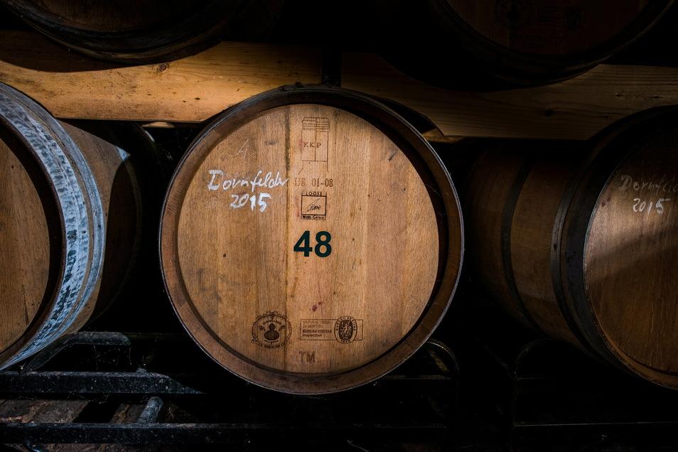 Aus dem Fass in das Fass: Diese Woche bespielt Winzer Steffen Loose aus Niederau den sehr besonderen Weinpavillon auf Meißens Markt.