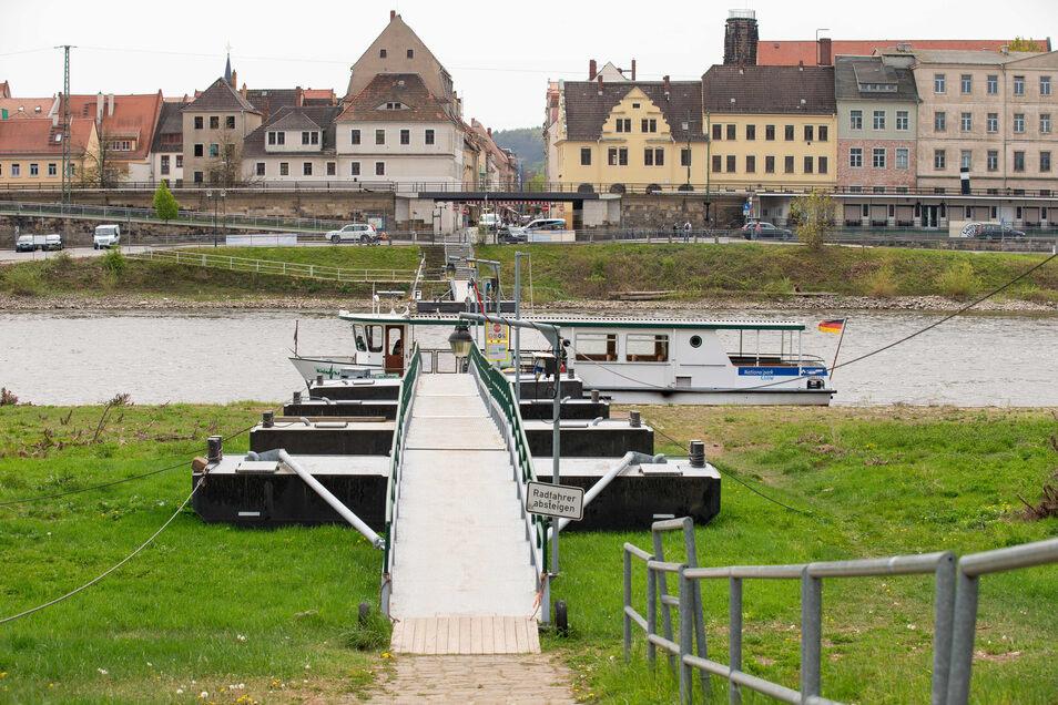 Die Elbfähre in Pirna-Copitz liegt derzeit besonders tief am Ufer.