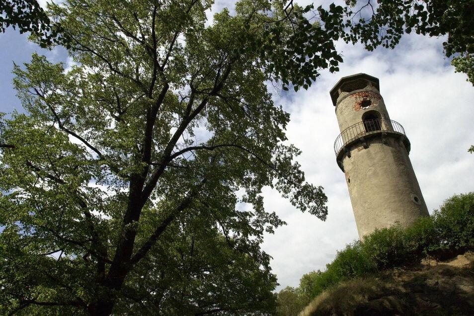 Der Aussichtsturm Hoher Stein - hier eine Archivaufnahme - ist ab Juli wieder geöffnet.