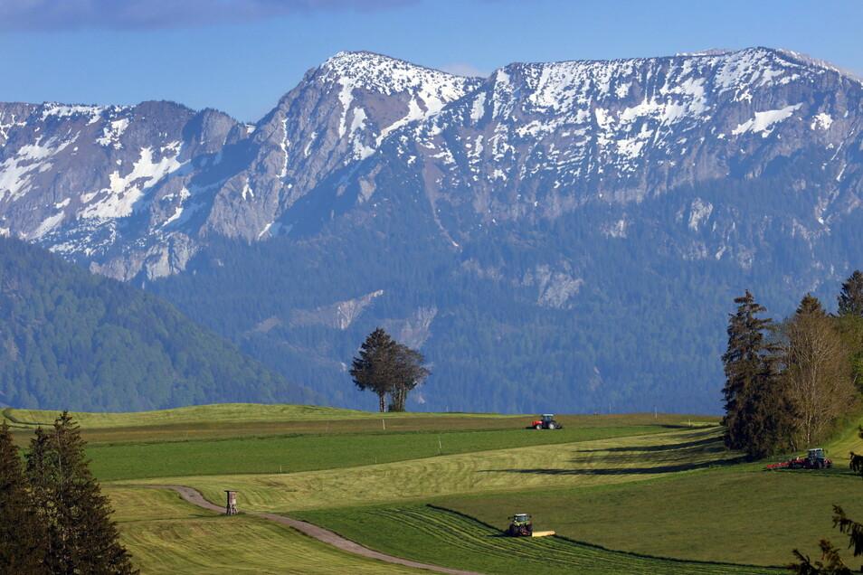 Ein Mann st bei einer Solo-Wanderung in den österreichischen Alpen ums Leben gekommen.