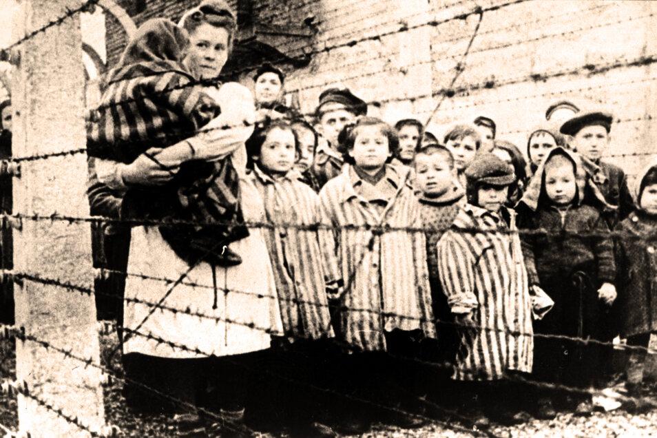 Jüdische Kinder hinter Stacheldraht: Am 27. Januar 1945 wurde das KZ Auschwitz von der Roten Armee befreit. Seit 25 Jahren wird an diesem Datum in Deutschland der Opfer des Nationalsozialismus gedacht.