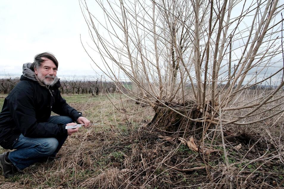 Manfred Eisbein engagiert sich seit Jahren für Umwelt- und Denkmalschutz in Klipphausen.