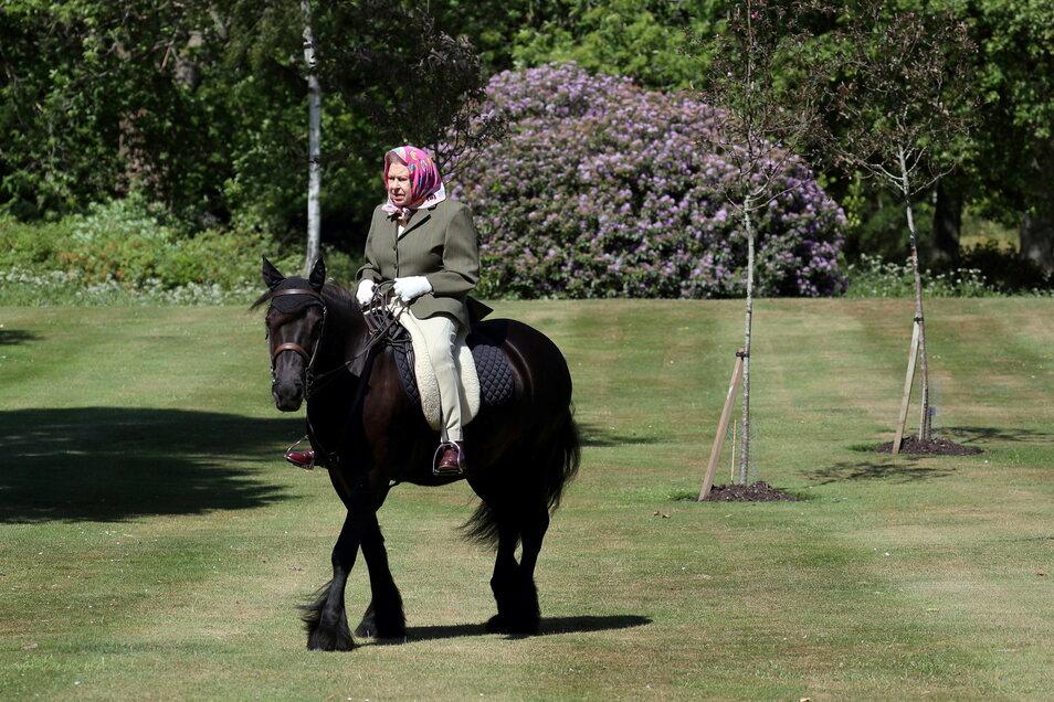 Königin Elizabeth II. reitet im Windsor Home Park auf dem 14-jährigen Fell-Pony Balmoral Fern.
