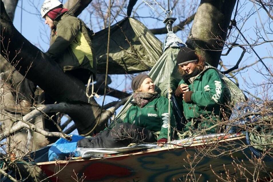 Baum-Protest im Januar 2008  Durch die Baumbesetzung und die Präsenz Dresdner Bürger war die geplante Fällung am 10. Januar zunächst verhindert worden.