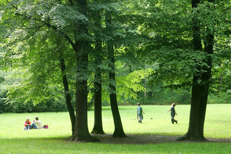 Waldpark Blasewitz