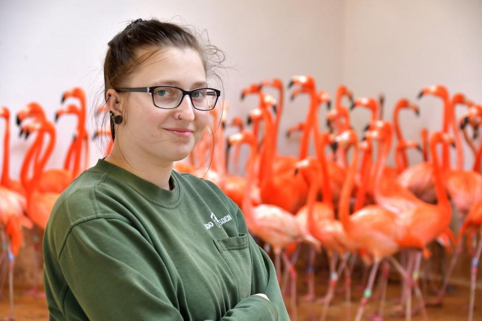 Pflegerin Jaqueline Mögel freut sich mit ihren Flamingos über das Ende der Stallpflicht.