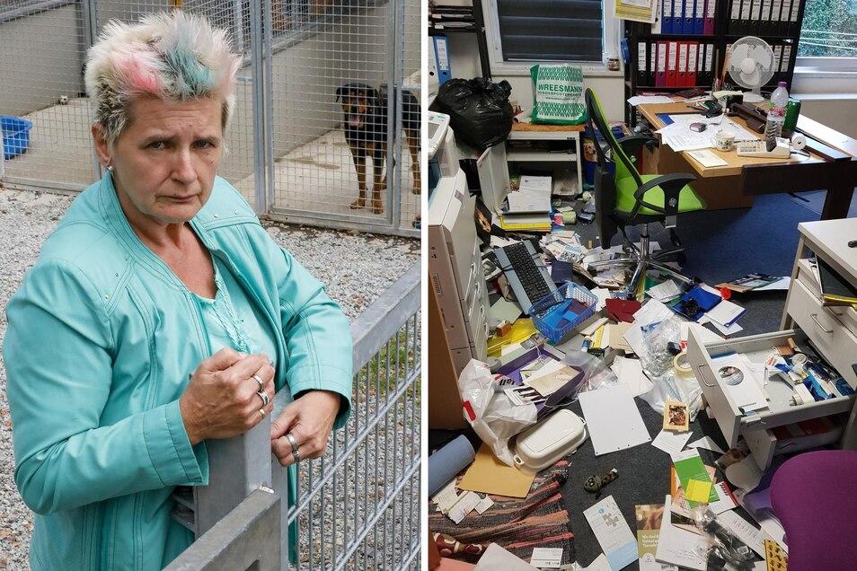 Ramona Loske hat dokumentiert, welches Chaos die Diebe im Tierheim Bischdorf hinterließen.