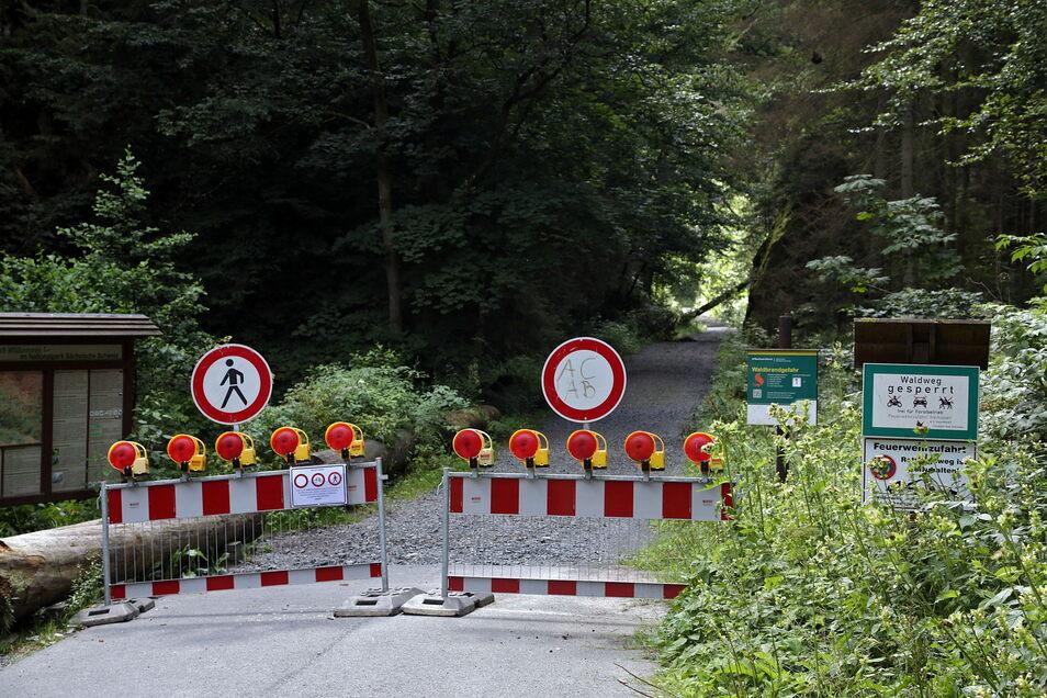 Streitthema Großer Zschand in der Sächsischen Schweiz: Der Weg ist wegen Baumsturzgefahr noch immer gesperrt.