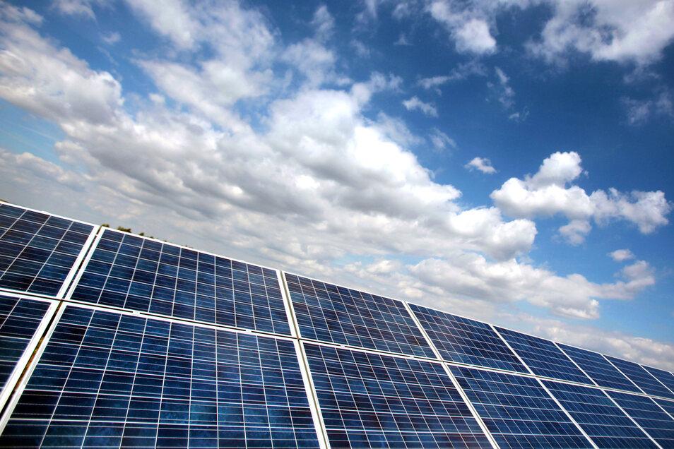 Photovoltaikanlagen wird man auf dem Grünland zwischen Bischofswerda und Weickersdorf auch künftig nicht sehen.