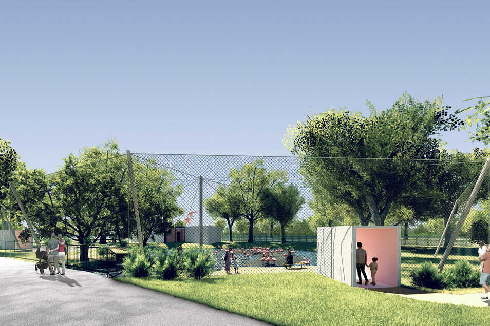 Die neue Flamingo-Anlage im Dresdner Zoo wird begehbar sein. Die Eröffnung verzögert sich etwas.