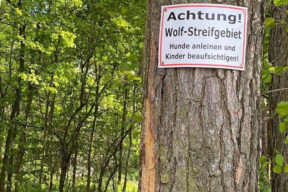 Am Park Naunhof in der Nähe des Wehres warnt dieses Schild mit offiziellem Anschein. Es ist interessant, wer es aufgehängt hat.