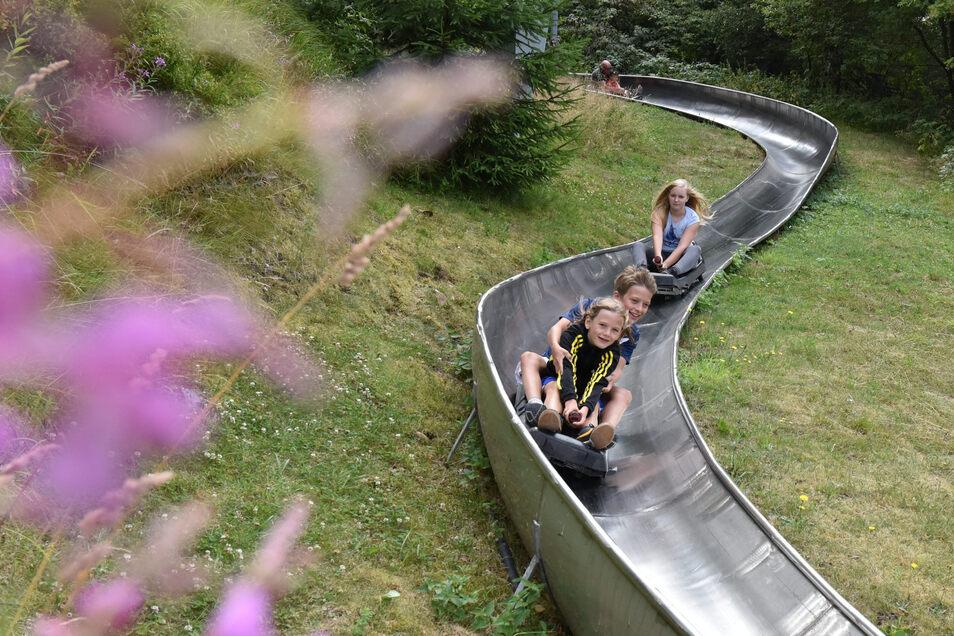 Es geht wieder los: Die Sommerrodelbahn Altenberg hat wieder geöffnet. Es gelten aber neue Regeln.