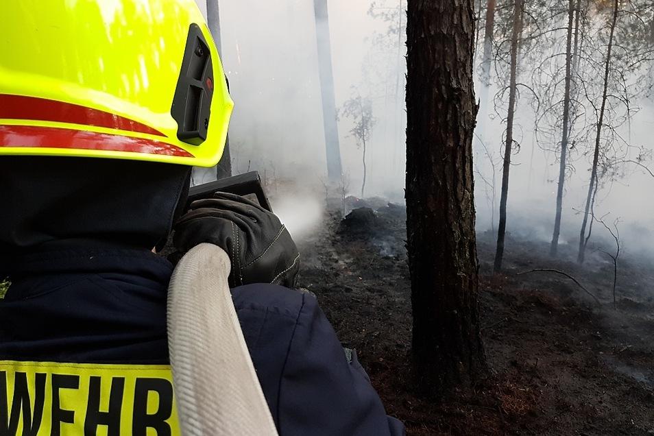 Dieses Foto entstand bei einem Waldbrand bei Leippe-Torno. Auch die Lautaer Ortsfeuerwehr war im Löscheinsatz.