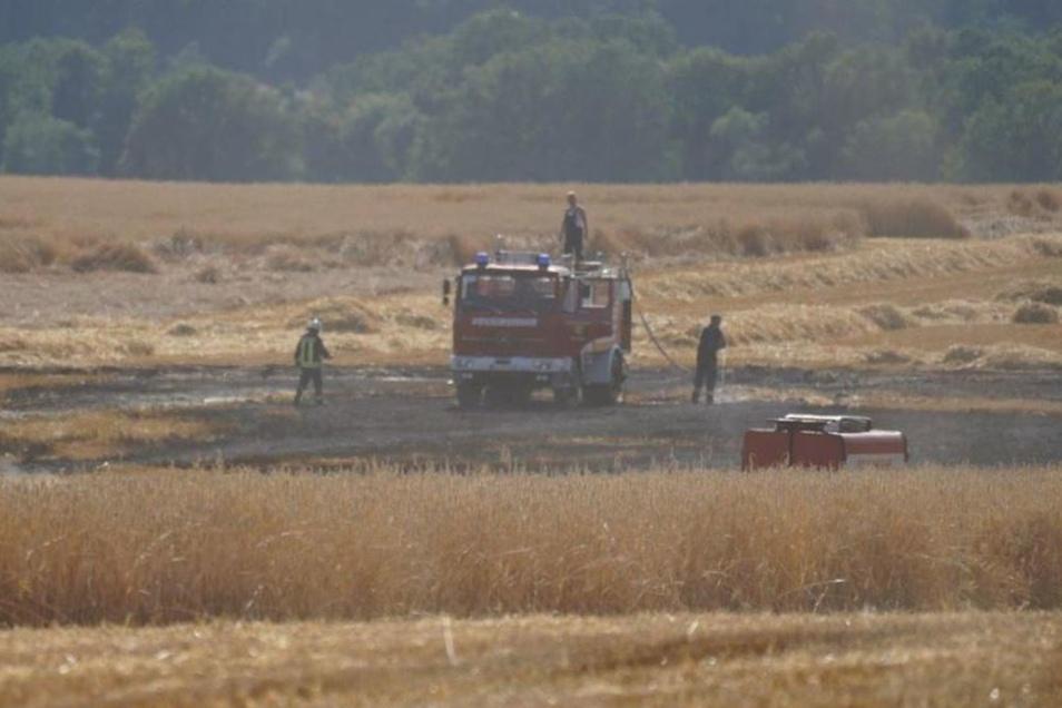 Feuerwehren löschten den Feldbrand bei Nechern.