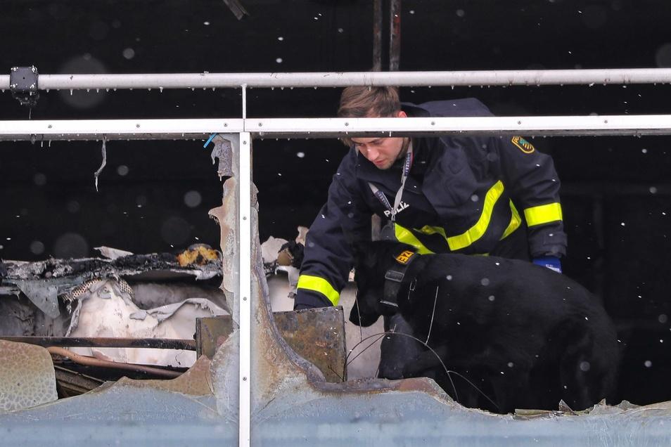 Brandursachsenermittler untersuchten die Brandwohnung - auch mit einem Polizeihund.
