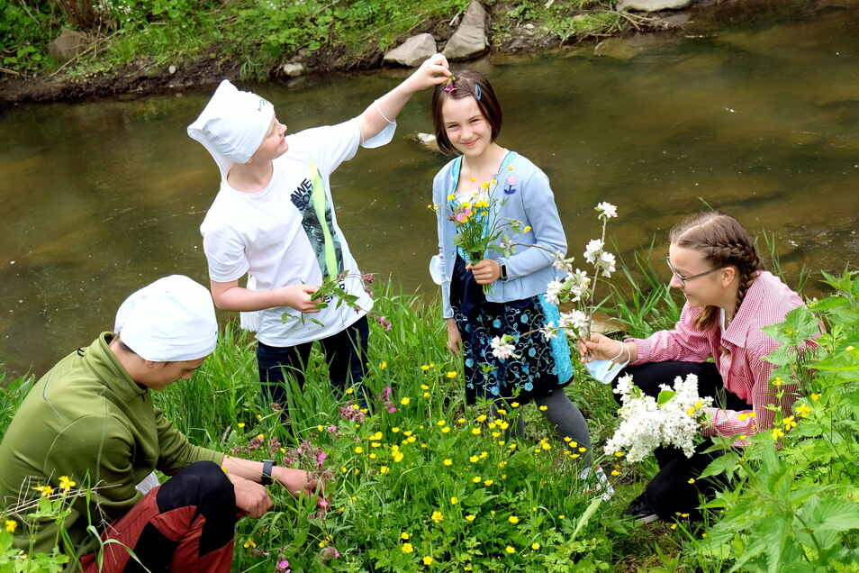 Richard, Helena und Thessa pflücken Blumen am Ufer der Triebisch an der Barth-Mühle im Triebischtal.