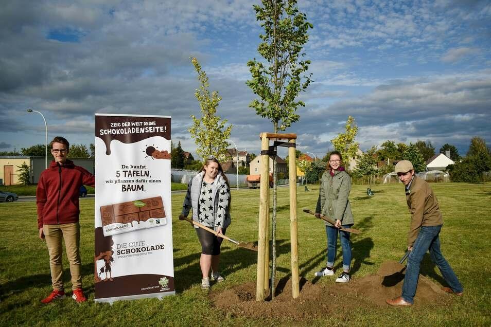 Klimabotschafter vom Christian-Weise-Gymnasium und der Weinau-Oberschule haben den Baum eingepflanzt.