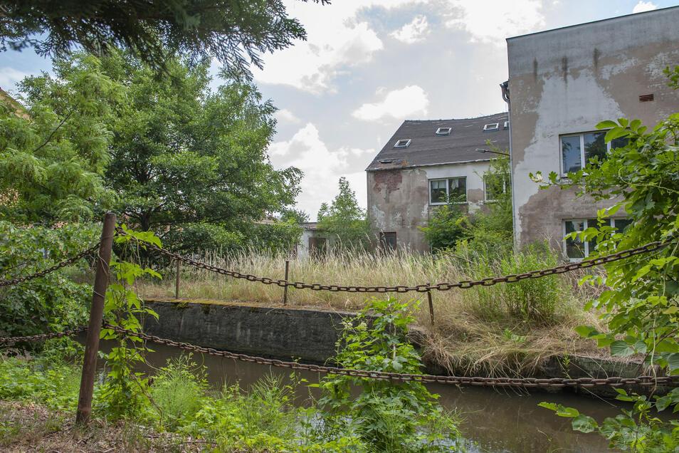 Schon länger wird am künftigen Wohngebiet An der Röderaue in Großenhain geplant. Jetzt kommt auch noch Corona dazwischen.