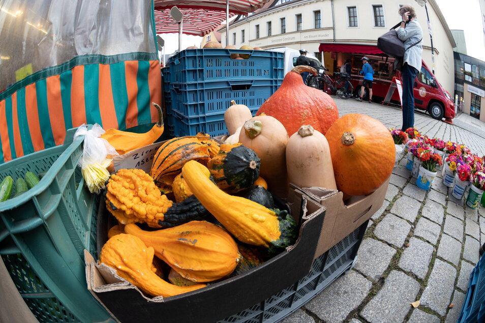 Herbstlich sieht es in diesen Tagen auf dem Markt aus.