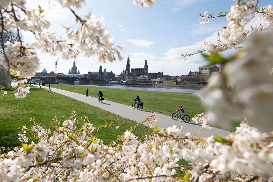 Sicher mit dem Rad durch Dresden.