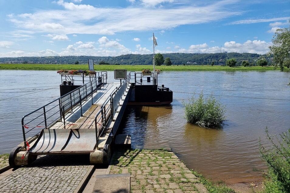 Der erste Uferbereich an der Dampferanlegestelle in Radebeul ist überflutet.