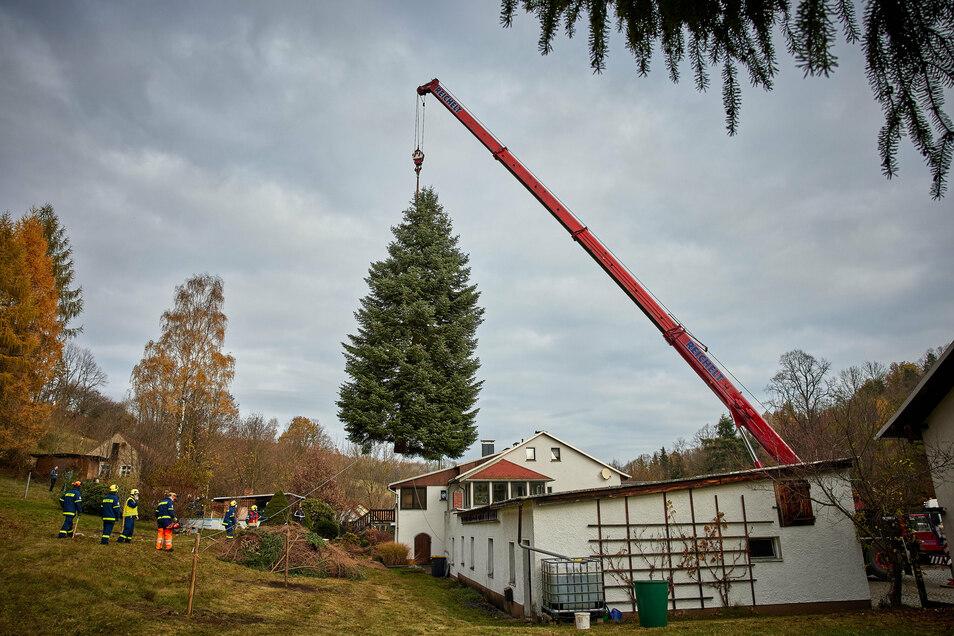 Kritischer Moment: In Liebstadt muss der Baum über das Garagendach gehoben werden.