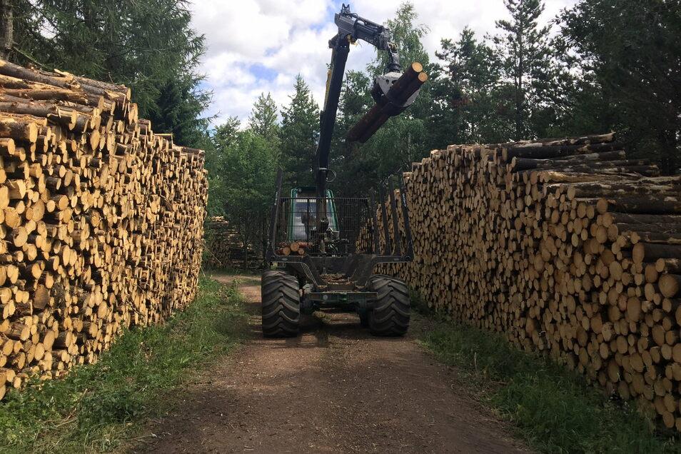 Wegen Sturm- und Borkenkäferschäden ist gegenwärtig viel Holz auf dem Markt. Die Stadtverwaltung Kamenz musste zum halben Preis verkaufen.