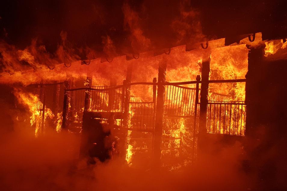 In der Silvesternacht brannte der Stall mit Scheune komplett ab.