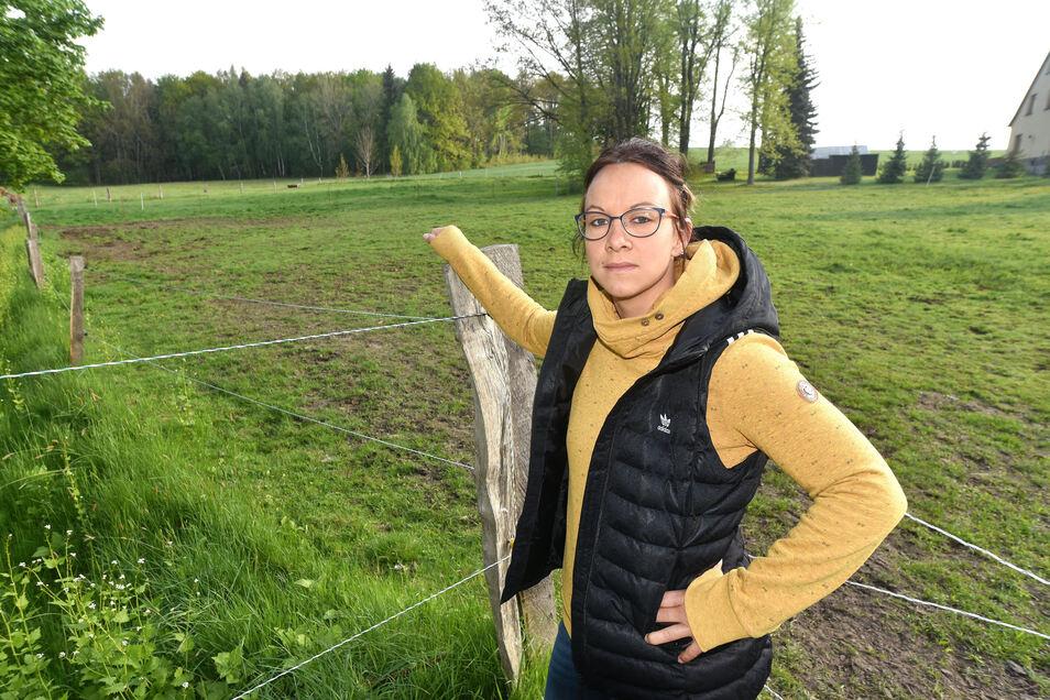 Anne Hentschel und ihre Familie sind noch immer geschockt. Auf dieser Koppel in Dürrhennersdorf starb ihre Stute auf grausame Weise.