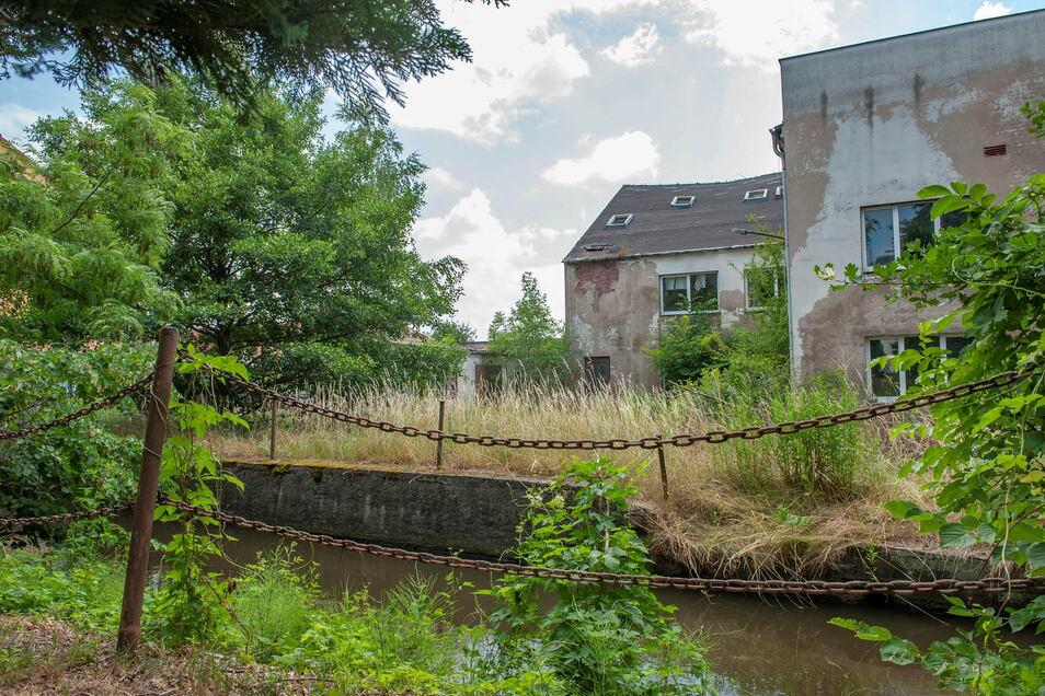 Das künftige Wohngebiet An der Röderaue, der alte Kreisbau, wird hochwassersicher geplant. Zumindest sollen keine Häuser überflutet werden.