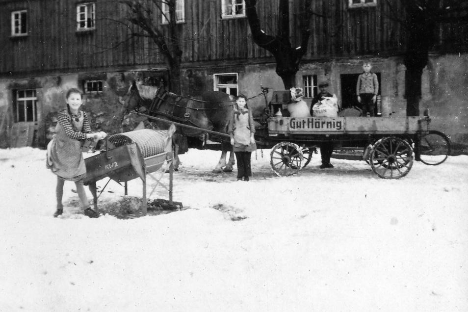 Zwei der Linden, die auf diesem Foto zu sehen sind, prägen bis heute den Anblick des Grundstücks. Früher standen sie vor dem Bauernhaus. Heute befindet sich dort die neu gebaute Werkstatt. Der Junge rechts auf dem Wagen ist Christian Hörnig.
