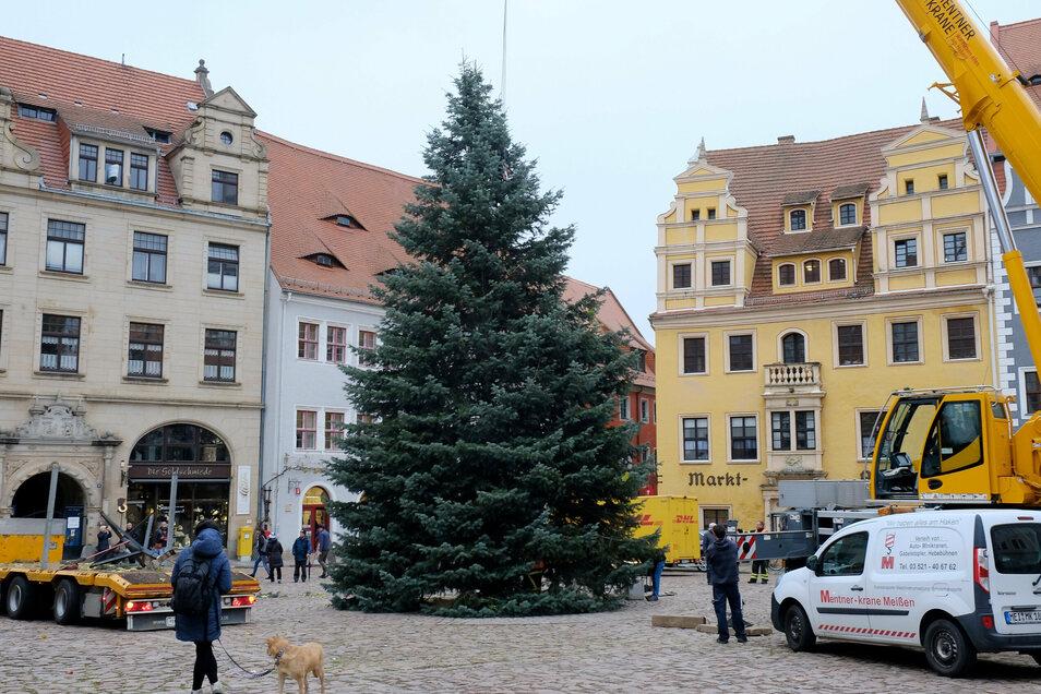 So wie es dieses Archivfoto aus dem vorigen Jahr zeigt, soll auch in diesem Jahr ein Weihnachtsbaum auf dem Markt aufgestellt und geschmückt werden. Er soll in der Adventszeit leuchten – unabhängig davon, ob der Weihnachtsmarkt stattfinden kann.