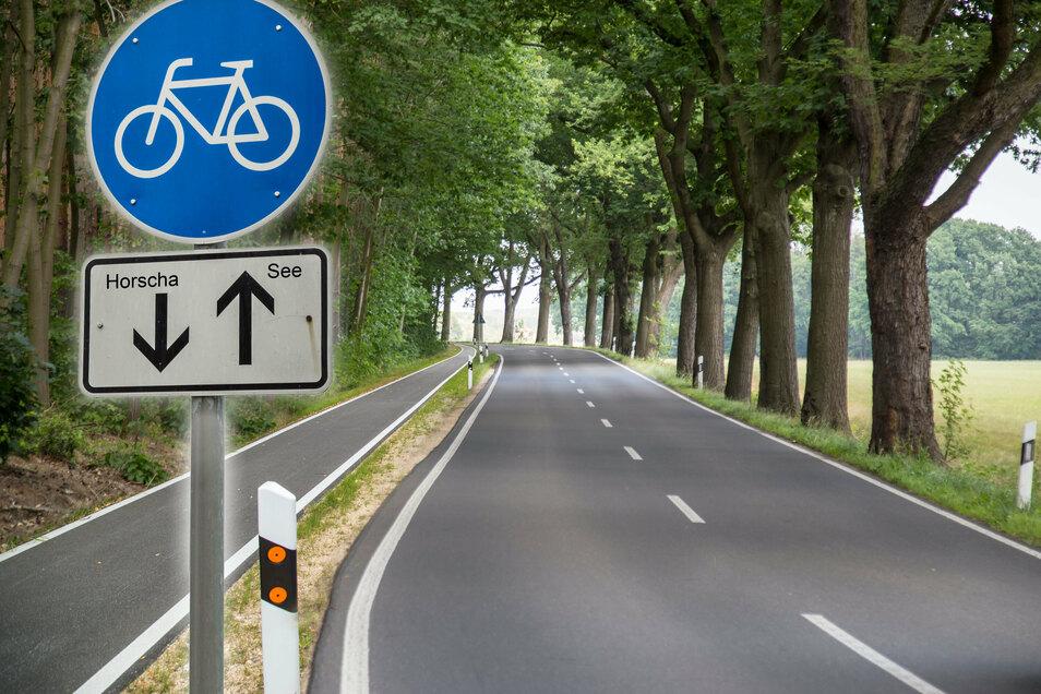 So könnte es in fünf oder sechs Jahren zwischen Horscha und See aussehen, wenn der Radweg fertig gebaut ist.