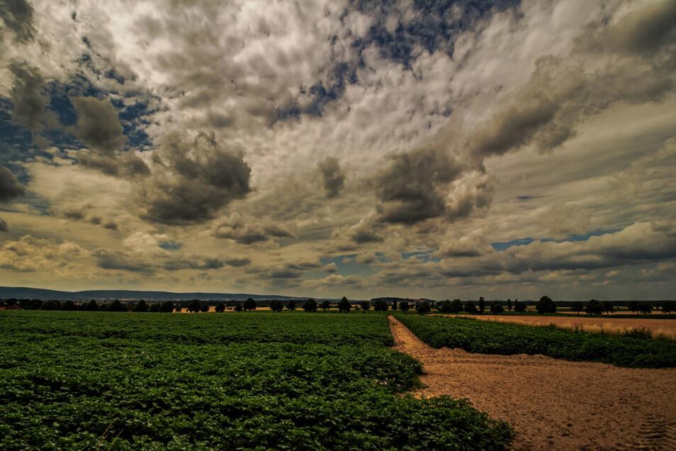 Die Landwirtschaft ist von starken klimatischen Schwankungen besonders betroffen.