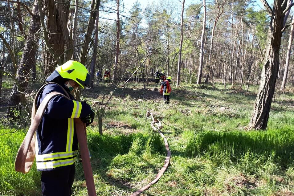 Die Feuerwehr löschte im Kreinitzer Wald – mit Mund-Nasen-Schutz.