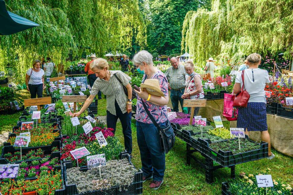 Pflanzen und noch viel mehr für drinnen und draußen gibt es bei der Messe Lebensart in Großharthau - diesmal aber später als üblich.